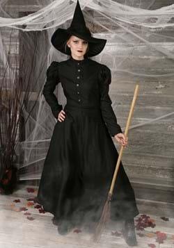 Disfraz de bruja malvada de lujo