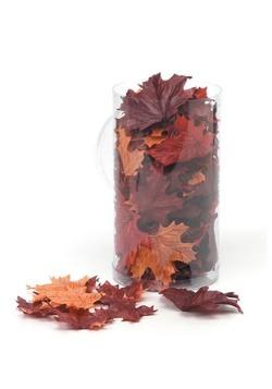 100 hojas de arce de pantalla de seda en recipiente