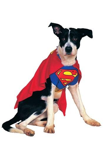 Disfraz para perro de Superman